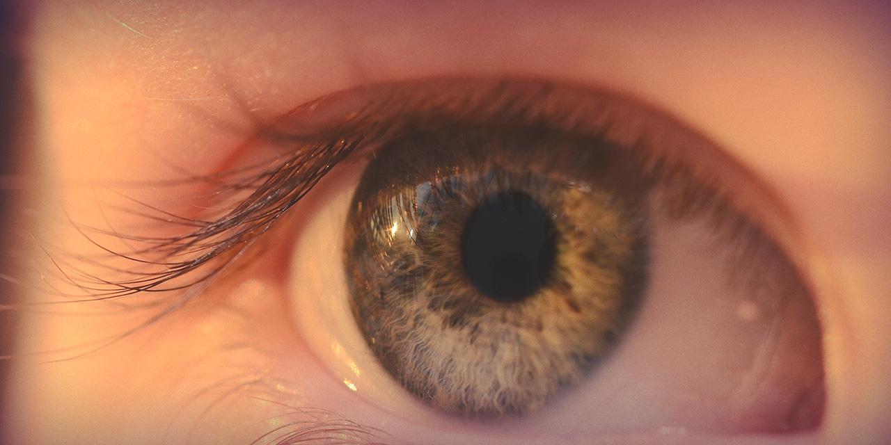 Glaukooman seuranta- ja hoitopalvelu